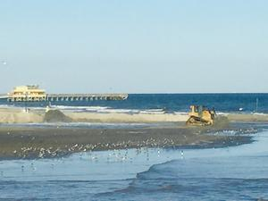 galveston island beach nourishment project progess