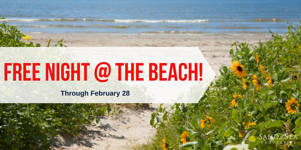 Free Night at the beach graphic with galveston island beach in the background