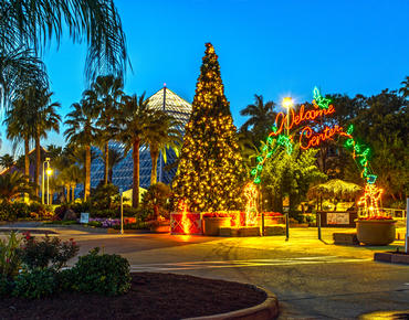 moody gardens festival of lights galveston tx