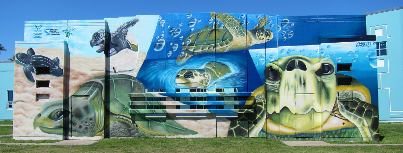 Mural of Sea Turtles at the McGuire Dent Rec Center