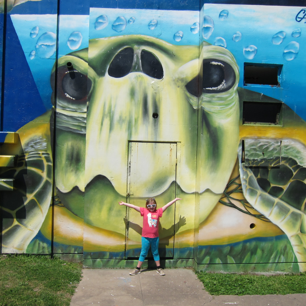 McGuire-Dent-Turtle-Mural