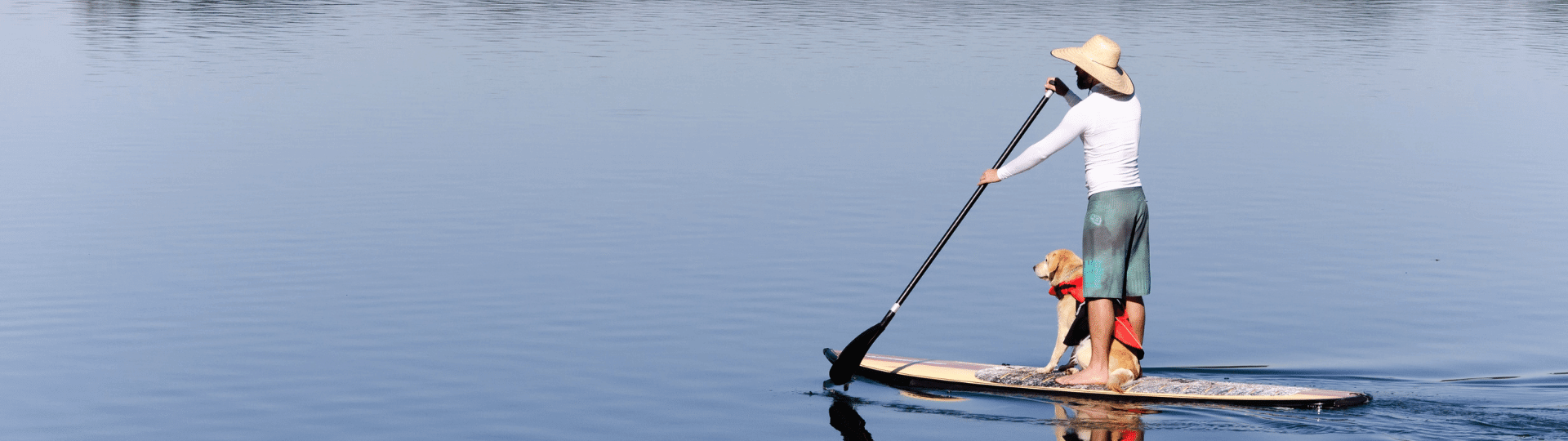 Man paddle boarding with dog