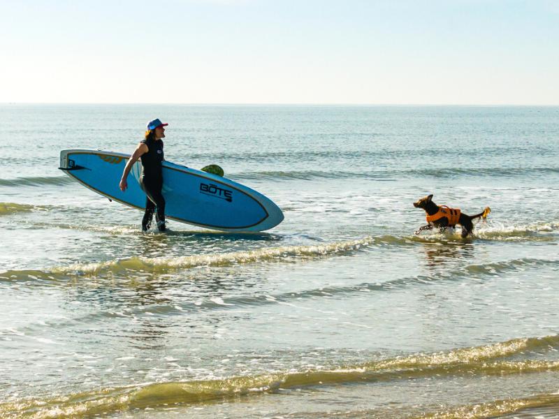 Man and dog surfing Galveston beaches