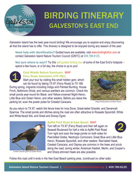 birding itinerary pdf for galveston east end