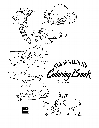 texas wildlife coloring book